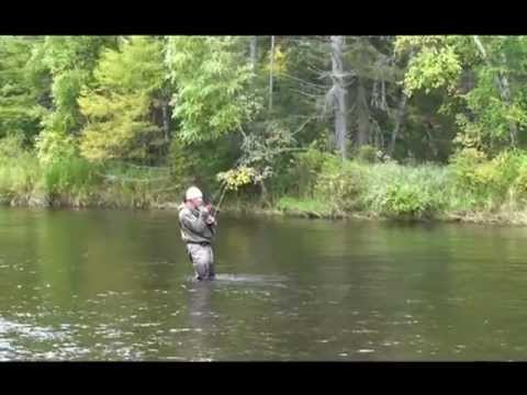 рыбалка в хабаровске на сома