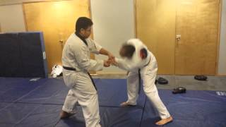 Hapkido Lock Flow Drills Mixted Martial Arts Training
