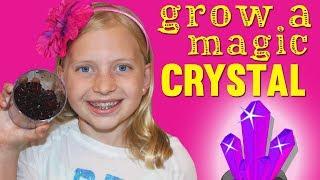 I Grew My Own Magic Crystal!