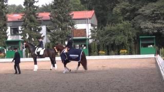 Bundeschampionate 2013: Siegerehrung Finale 6j. Dressurpferde