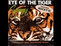 Eye Of The Tiger Survivor DRUM COVER mp3
