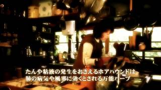 ハロウィンとホアハウンド〜ベニシアさんのエッセイより〜