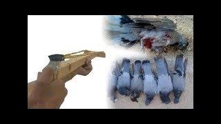 كيف تصنع قناصةالنبلة للصيد قاتلة وتصويب خرافي  ومسافة كبيرة