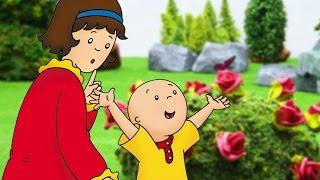Funny Animated cartoon Kid | Caillou celebrates Mother