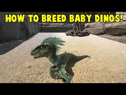 How to Breed Baby Dinos! Ark Survival Evolved
