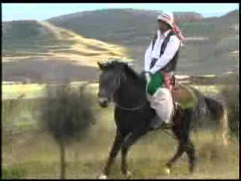 mi caballo y mi mujer