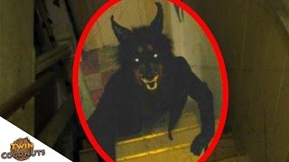 OMG WHAT IS THAT! - Top 5 Mysterious Creatures Caught On Camera - Reaction!