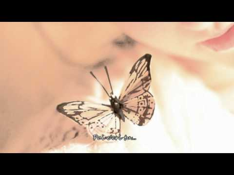 Amedeo Minghi I ricordi del cuore with lyrics