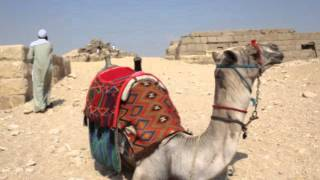MISR - Egypt (2010)