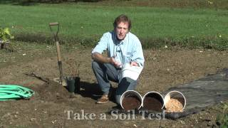 Site Selection: How to Grow Blueberries