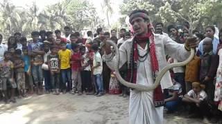 voyaboho saper khela 2016