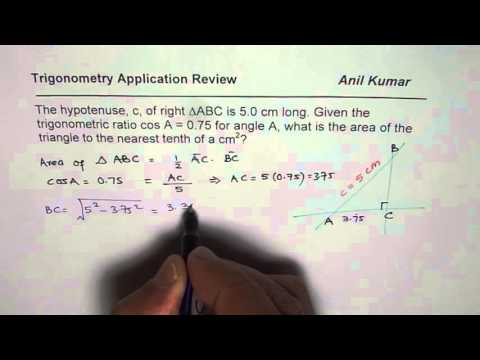 How to Find Area of a Triangle Give Cosine Ratio and Hypotenuse