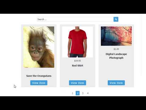 Creating a Free Online Store using Stripe Payment Gateway