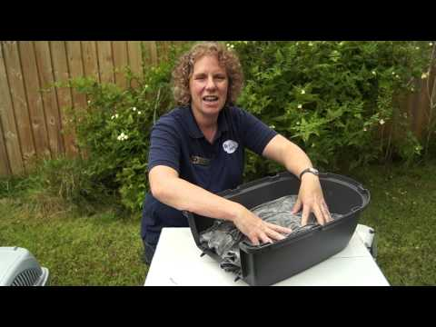 Choosing a Cat Carrier - Ash Veterinary Surgery
