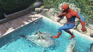Download GTA 5 Water Ragdolls | SPIDERMAN Jumps/Fails #19 (Euphoria physics | Funny Moments) Video