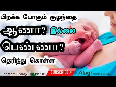 கருவில் வளர்வது ஆணா? பெண்ணா? வீட்டிலேயே கண்டுபிடிக்க | How to find girl or boy baby in Tamil