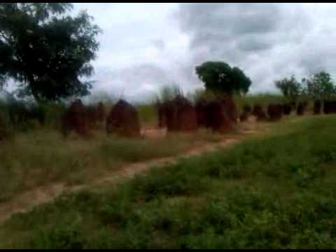 Ancient Stones Monument To The Gods ?  - Gambia