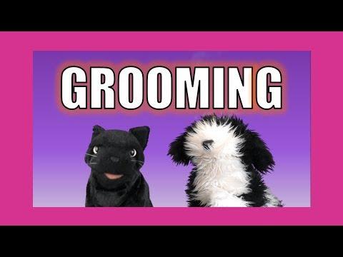 Grooming:  George the Self Esteem Cat