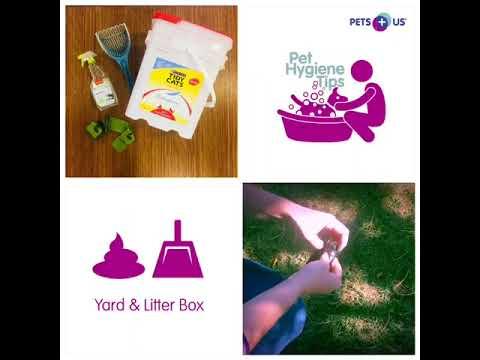Pet Hygiene Tips: Yard & Litter Box Clean-up