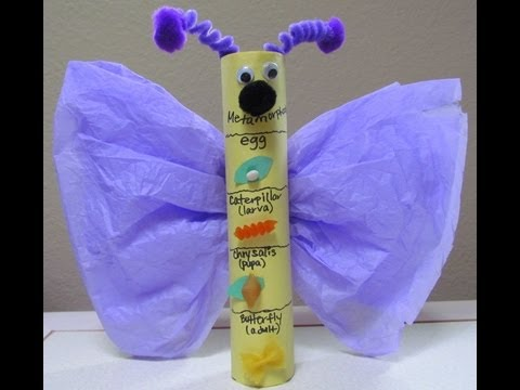 How to make a Butterfly Craft: Metamorphosis