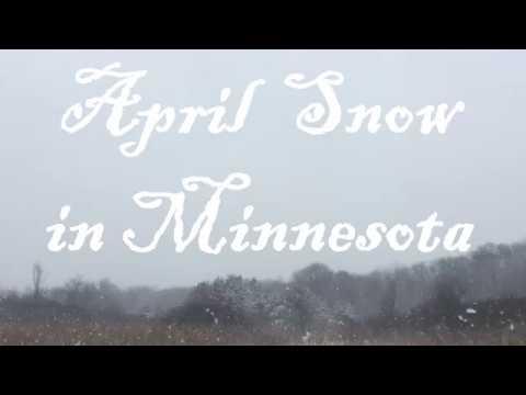April Snow in Minnesota