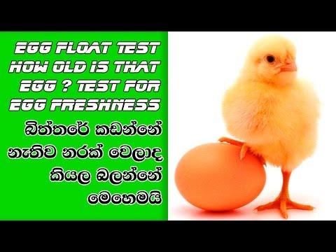Egg Float Test   How Old is That Egg ? Test for Egg Freshness