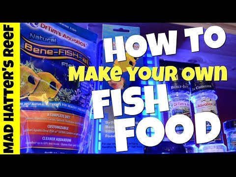 How To Make Your Own Fish Food