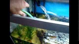 #x202b;החלפת מים#x202c;lrm;