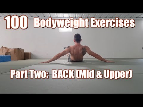100 BODYWEIGHT EXERCISES (NO GYM REQUIRED) | BACK (MID & UPPER)