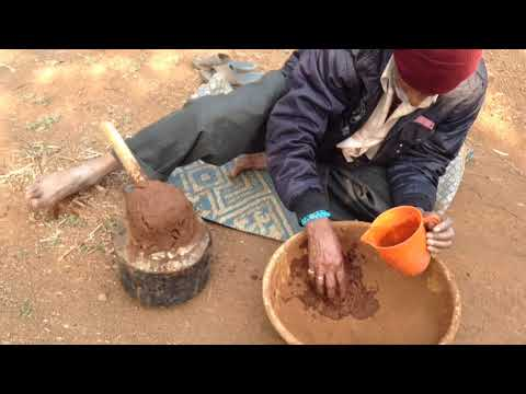Making wine from Chikoo ( Mudberry, Sapodilla fruit) Part 1. Ancient Method | Granny and Poppa at it