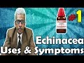 Echinacea (Part -1) - Uses and Symptoms in Homeopathy by Dr. P.S. Tiwari