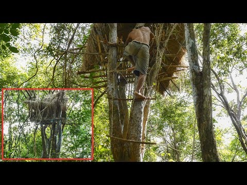 Primitive Technology, Rope ladder (thatched tree huts upgrade)