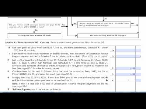Schedule SE Self-Employment (Form 1040) Tax return preparation
