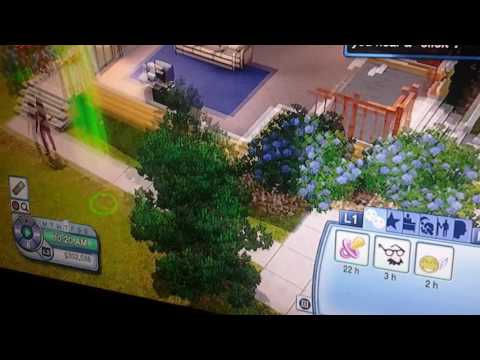 Best cheat on Sims 3 ps3 and xbox360
