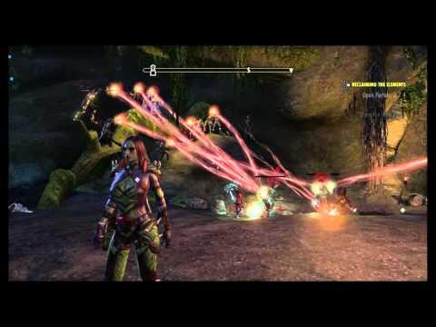 The Elder Scrolls Online - Bots leveling?