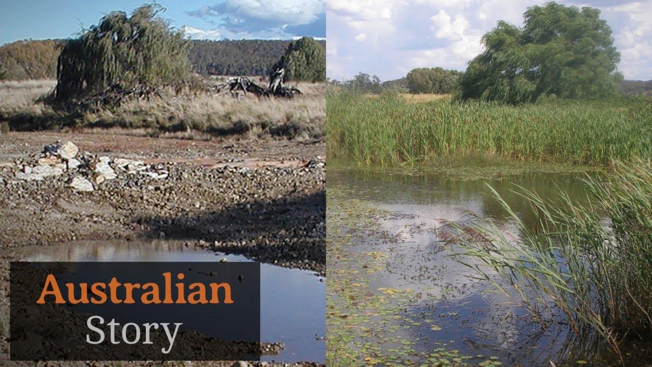 Natural sequence farming: How Peter Andrews rejuvenates drought-struck land   Australian Story