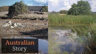 How Peter Andrews rejuvenates drought-struck land | Australian Story