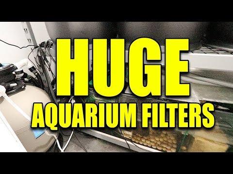 My aquarium filter room