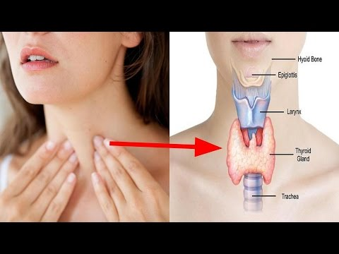 6 Foods To Improve Thyroid Function