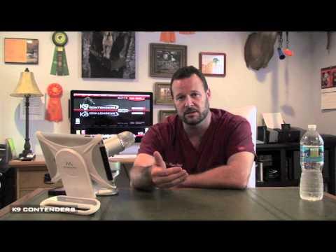 K9C Vet Dr Marc Smith - Can I Give My Dog Gatorade?