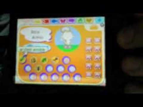 Animal Crossing Wild World: My Massive Garden and my House