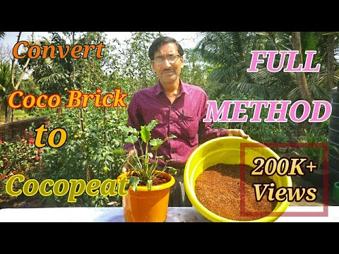 How to Make Cocopeat from Cocobrick and Use it.