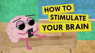 How to Give Your Brain the Stimulation It Needs