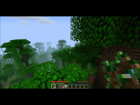 Video TEST #3  Minecraft epic fail jump