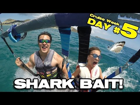 SHARK BAIT!!! Parasailing & Banana Boat in St. Maarten!  [CRUISE WEEK DAY 5]
