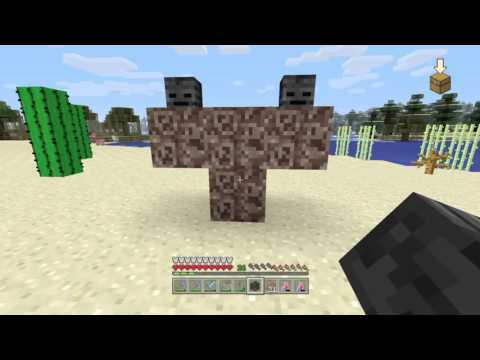 Killing The Wither Boss In Minecraft 100% Survival Mode