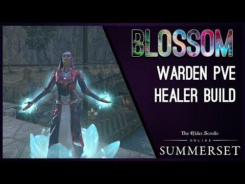 Magicka Warden Healer Build