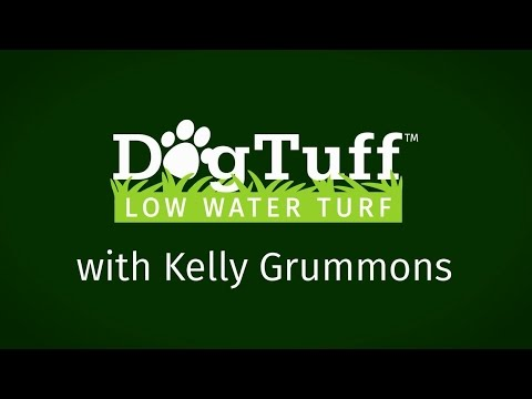 Plant Select Dog Tuff grass w Kelly Grummons