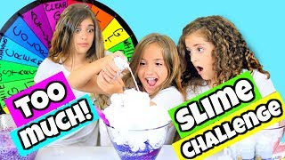 Mystery Wheel of Adding Too Much of Everything Slime Challenge!!