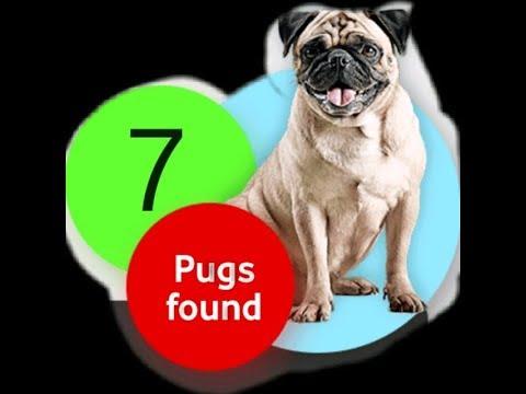 Vodafone Offer Find Pug i got all 7 Proof added